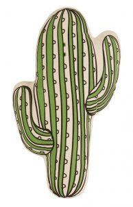 cactus-kussen