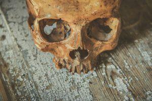 skull-2723063_1920